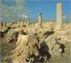 Ancient Amathous