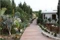 Botanical Park 1